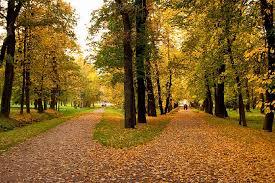 Payız Azərbaycana sentyabrın 23-də gələcək