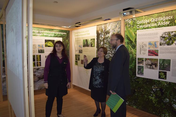 Volksvagen Fondunun dəstəyi ilə AMEA Botanika İnstitutunda uğurlu layihə həyata keçirilir