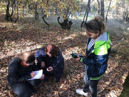 AMEA Botanika İnstitutunun əməkdaşları Şəkidə fenoloji tədqiqatlar aparıblar