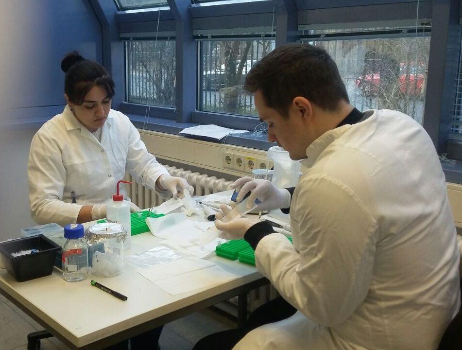 AMEA Botanika İnstitutunun doktorantı Almaniyada bitkilərin molekulyar filogenetikası üzrə ixtisas kursunda iştirak edib